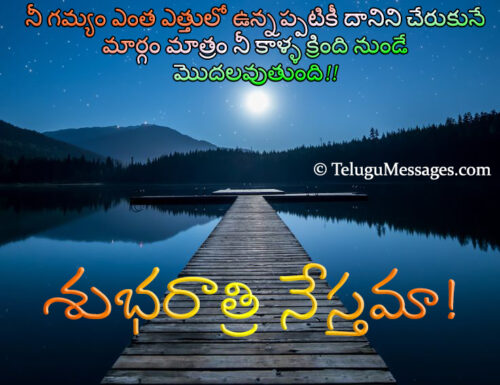 Good Night Quotes On Goal