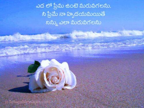 Telugu Love on forget