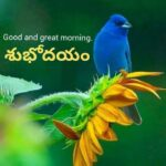 Good Morning Wishes in Telugu With Inspirational Words