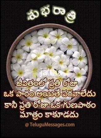 Telugu Good Night Quote