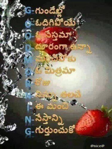 Good Night definition in Telugu