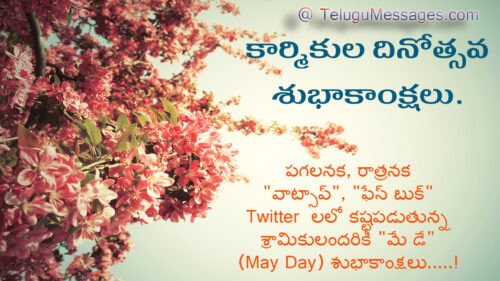 Funny May Day Wishes in Telugu