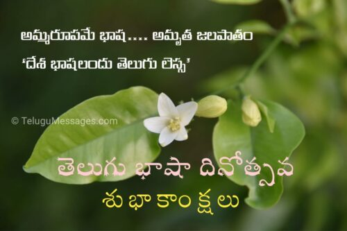 Telugu Language Day Wishes Quotes