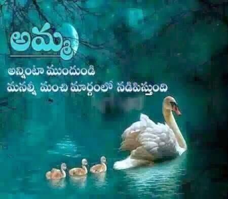 Wonderful Mother Quote in Telugu