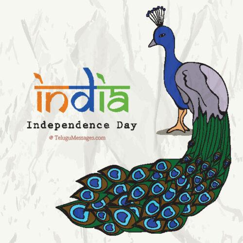 independence-day-photos