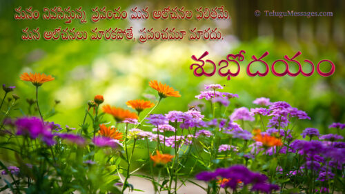 Good-Morning-Flowers-Garden