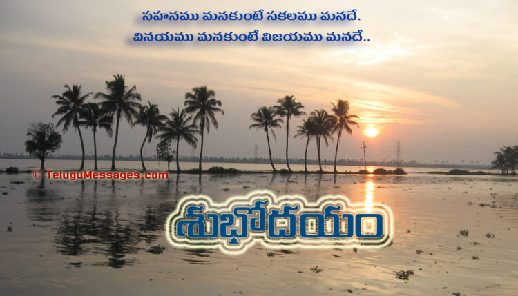 Telugu Good Morning Quote on Patience - Coconut Trees
