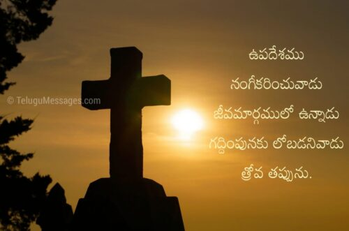 Bible Jesus Quotes in Telugu