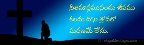 Bible Quotes in Telugu