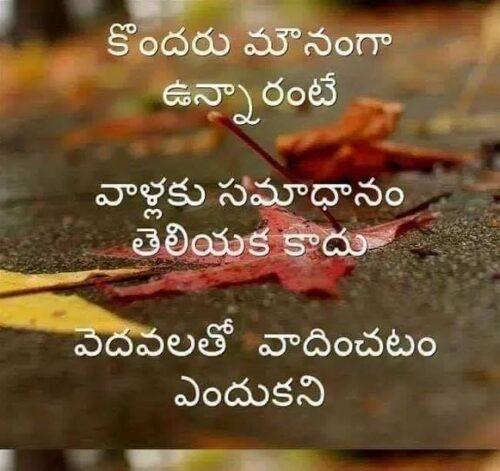 Empty vessels make much noise - Telugu Quotes