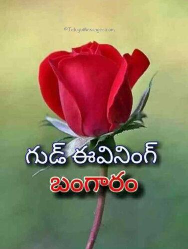 Good Evening Bangaram