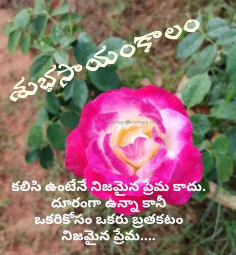 Good Evening Love Quotes
