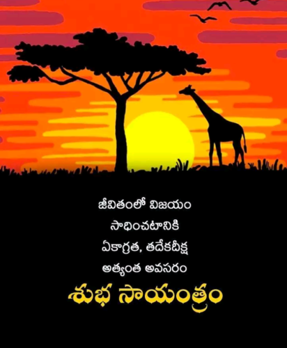 Good Evening Telugu Quotes