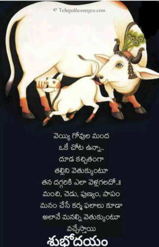 Good Morning Telugu Quote on Mothers Love.