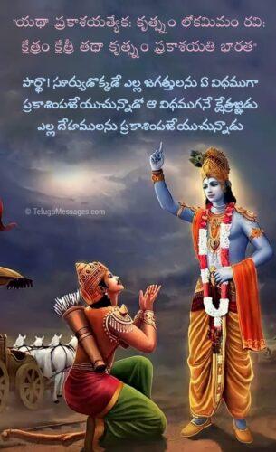 Lord Krishna Bhagavad Gita Quotes in Telugu