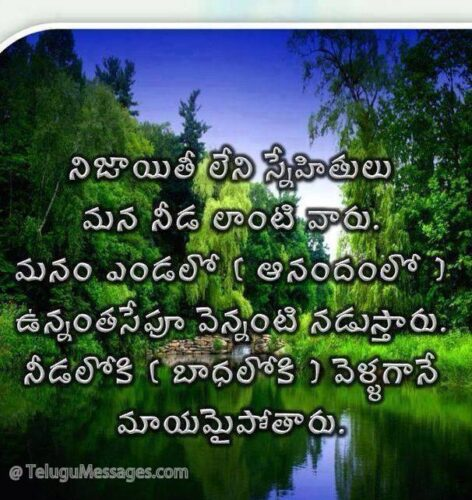Real Friendship Quote in Telugu