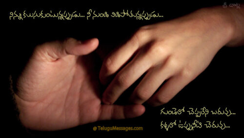 Telugu Friendship Quotations
