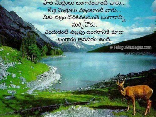 Telugu Old Friendship quote