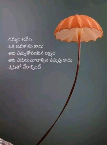 Telugu Quotes on Goal