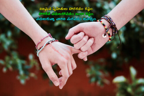 True Friend Quotations Telugu
