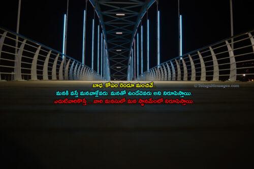 Sad Life Quotes in Telugu